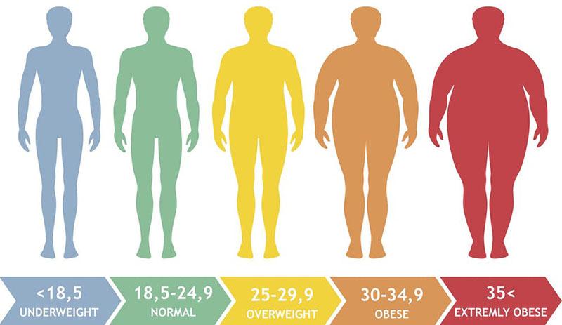 স্থুলতা (obesity) : যখন সব রোগের মূল এবং আলোচনা